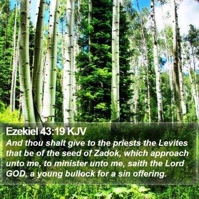 Ezekiel 43:19 KJV Bible Verse Image