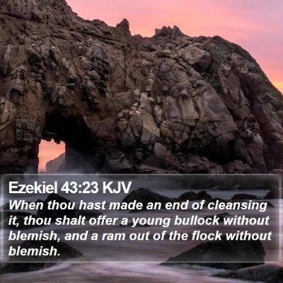 Ezekiel 43:23 KJV Bible Verse Image