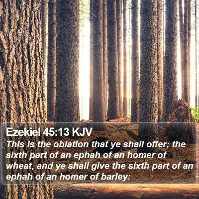 Ezekiel 45:13 KJV Bible Verse Image
