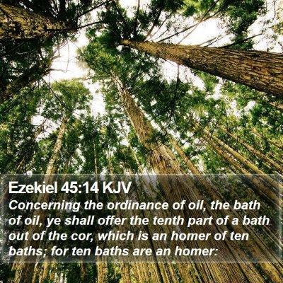 Ezekiel 45:14 KJV Bible Verse Image