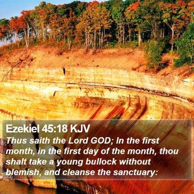 Ezekiel 45:18 KJV Bible Verse Image