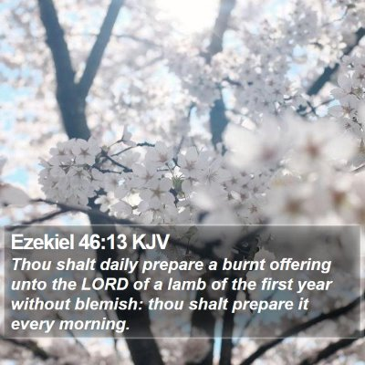 Ezekiel 46:13 KJV Bible Verse Image