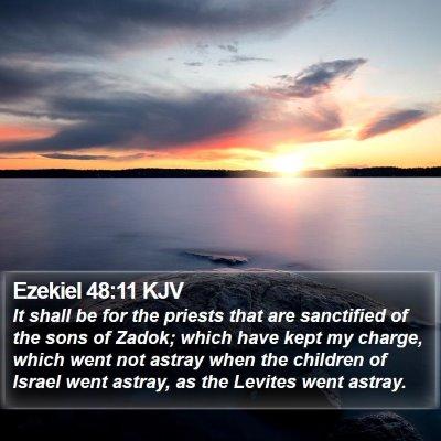 Ezekiel 48:11 KJV Bible Verse Image