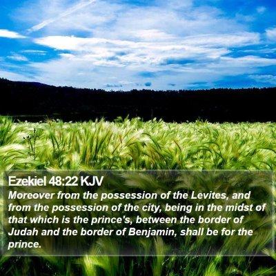Ezekiel 48:22 KJV Bible Verse Image
