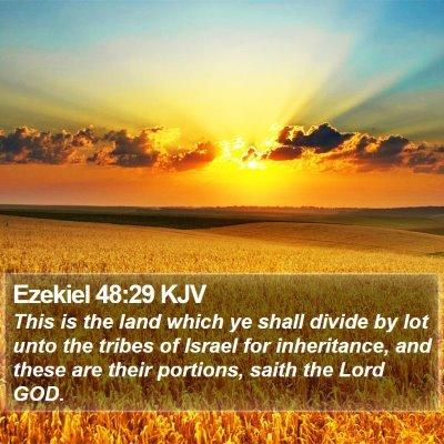 Ezekiel 48:29 KJV Bible Verse Image
