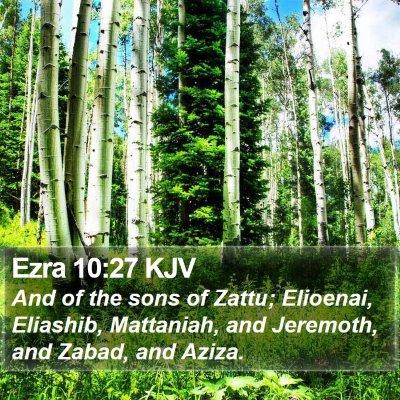 Ezra 10:27 KJV Bible Verse Image