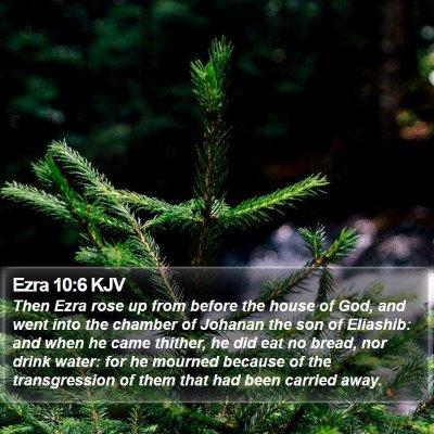 Ezra 10:6 KJV Bible Verse Image