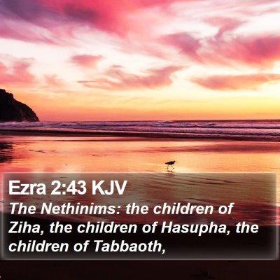 Ezra 2:43 KJV Bible Verse Image
