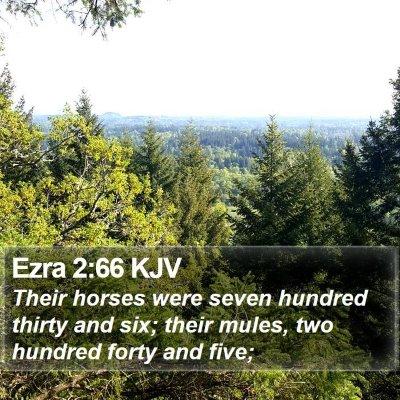 Ezra 2:66 KJV Bible Verse Image