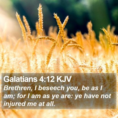 Galatians 4:12 KJV Bible Verse Image