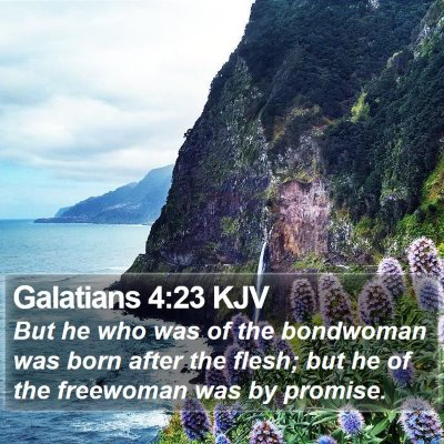 Galatians 4:23 KJV Bible Verse Image