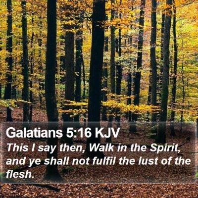 Galatians 5:16 KJV Bible Verse Image