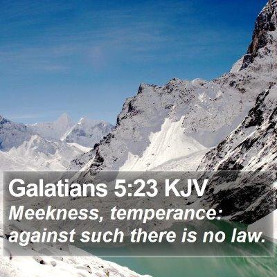 Galatians 5:23 KJV Bible Verse Image