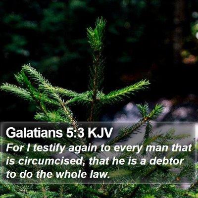 Galatians 5:3 KJV Bible Verse Image