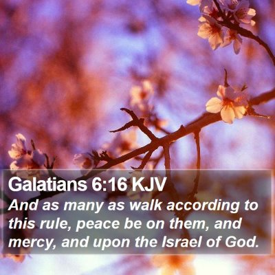 Galatians 6:16 KJV Bible Verse Image