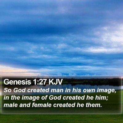 Genesis 1:27 KJV Bible Verse Image
