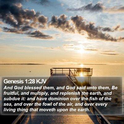 Genesis 1:28 KJV Bible Verse Image