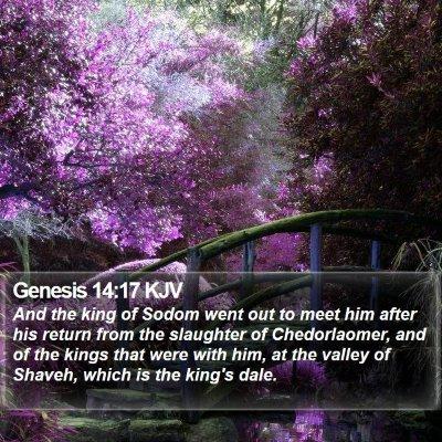 Genesis 14:17 KJV Bible Verse Image