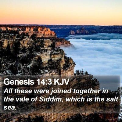 Genesis 14:3 KJV Bible Verse Image