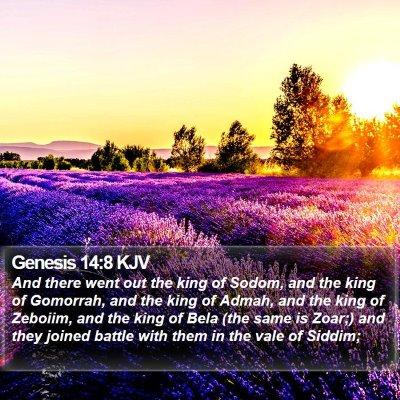 Genesis 14:8 KJV Bible Verse Image