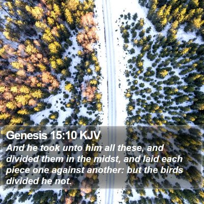 Genesis 15:10 KJV Bible Verse Image