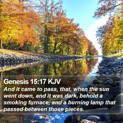 Genesis 15:17 KJV Bible Verse Image
