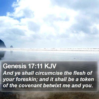 Genesis 17:11 KJV Bible Verse Image