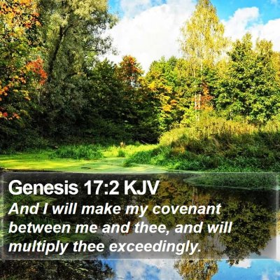 Genesis 17:2 KJV Bible Verse Image
