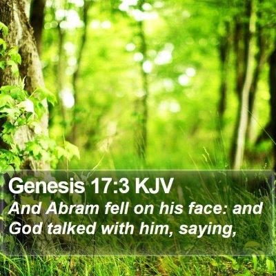 Genesis 17:3 KJV Bible Verse Image