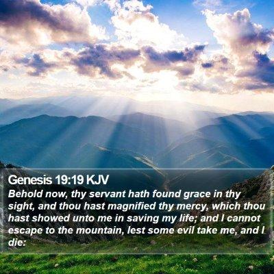 Genesis 19:19 KJV Bible Verse Image