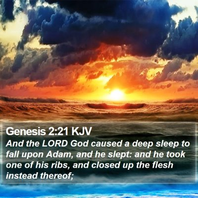 Genesis 2:21 KJV Bible Verse Image