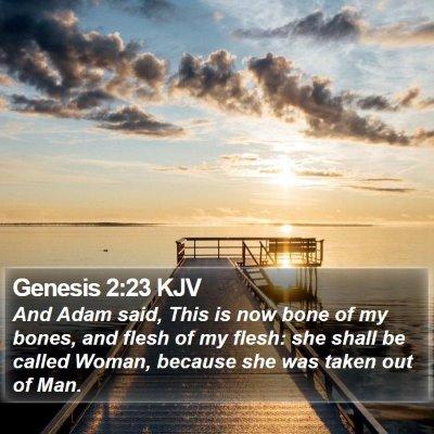 Genesis 2:23 KJV Bible Verse Image