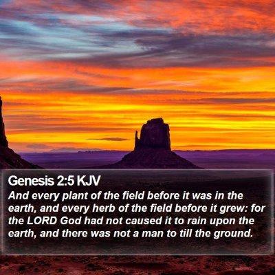 Genesis 2:5 KJV Bible Verse Image