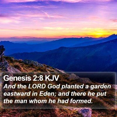 Genesis 2:8 KJV Bible Verse Image
