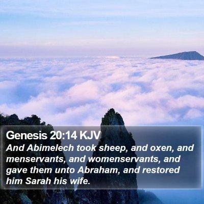 Genesis 20:14 KJV Bible Verse Image