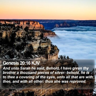 Genesis 20:16 KJV Bible Verse Image