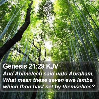 Genesis 21:29 KJV Bible Verse Image