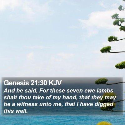 Genesis 21:30 KJV Bible Verse Image