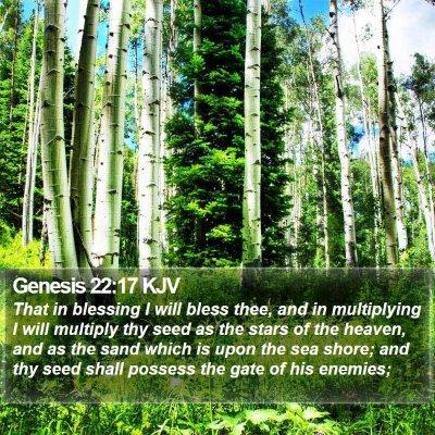 Genesis 22:17 KJV Bible Verse Image