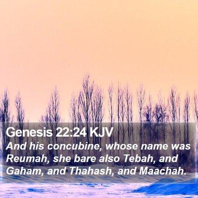 Genesis 22:24 KJV Bible Verse Image