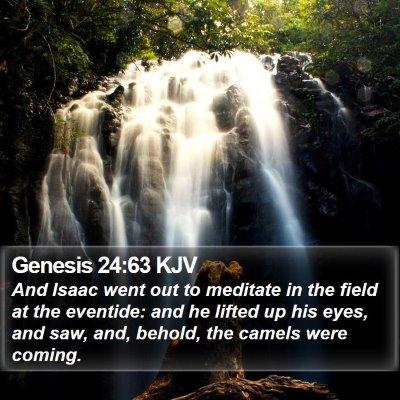 Genesis 24:63 KJV Bible Verse Image