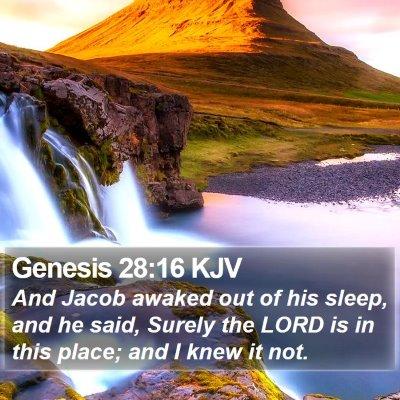 Genesis 28:16 KJV Bible Verse Image