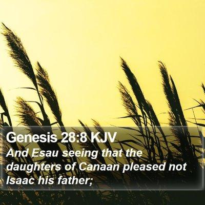 Genesis 28:8 KJV Bible Verse Image