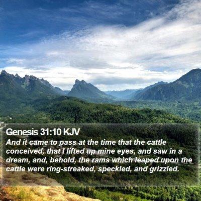 Genesis 31:10 KJV Bible Verse Image