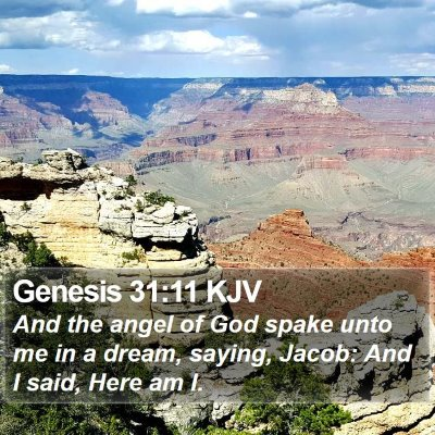Genesis 31:11 KJV Bible Verse Image