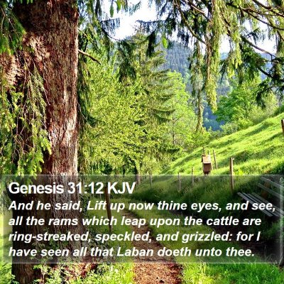 Genesis 31:12 KJV Bible Verse Image