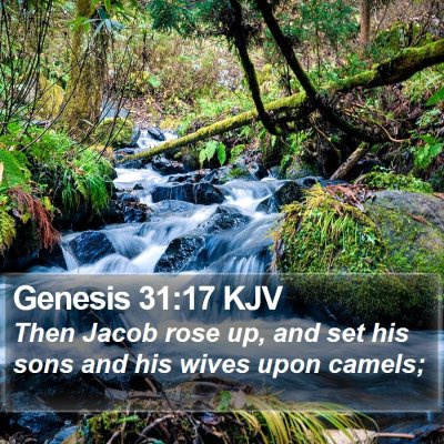Genesis 31:17 KJV Bible Verse Image