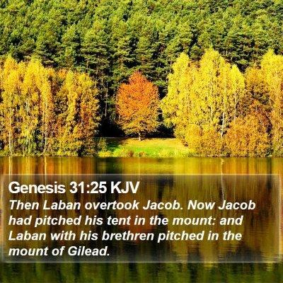 Genesis 31:25 KJV Bible Verse Image