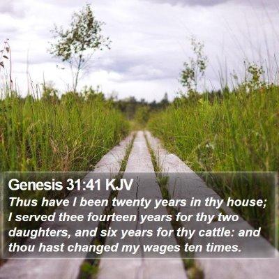 Genesis 31:41 KJV Bible Verse Image