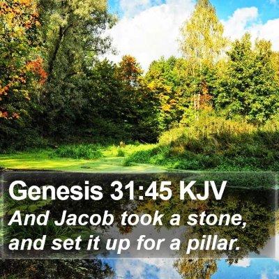Genesis 31:45 KJV Bible Verse Image